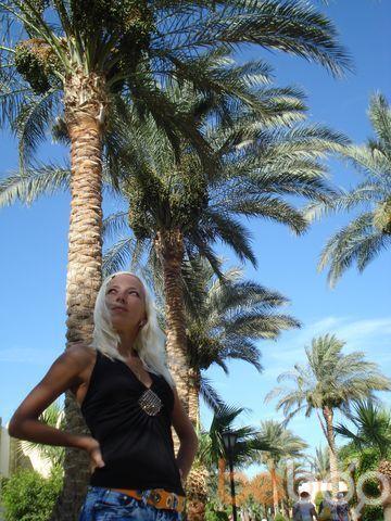 Фото девушки киска, Владимир, Россия, 31