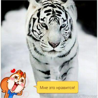 Фото мужчины костя, Воронеж, Россия, 26
