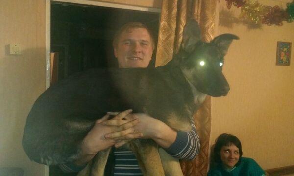 Фото мужчины Василий, Миасс, Россия, 24