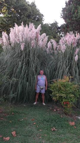 Фото мужчины Коля, Киров, Россия, 52